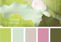 Colors / by Suzana Duarte
