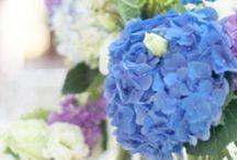 My wedding-Flowers