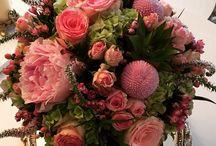 Çiçek dünyasından