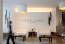Hotel Molina Lario / El Hotel Molina Lario es un hotel de 4 estrellas que cuenta con una situación privilegiada en el corazón de Málaga justo enfrente de la Catedral, a escasos metros del Puerto, del Museo Picasso y de la zona peatonal de la ciudad. Es un hotel con encanto en el centro de la ciudad, formado por dos edificios rehabilitados con fachada original del s.XIX y un tercero completamente nuevo, que integran un conjunto hotelero único en el centro de la ciudad de Málaga.