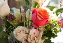 Cool Weddings / by Randa Bloomer