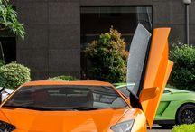 magnifiche cars