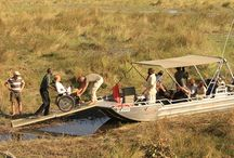 Esteetön safari Botswana / Esteetön safari Botswana