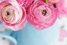 Flower Time - Ranunculi!