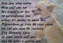 Ο σκυλος μου.