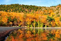 Fall Foliage / A change in the season means a change in the leaves. There's nothing quite like Autumn in Maine.