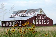 My Texas A&M Aggies ♥ / by Becky Benson Smith