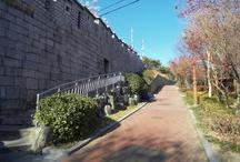 Seoul Fortress / 서울 성곽길 사진 모음