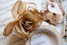 flowers / by Linda Pieratt