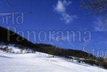panoramic winter scenes