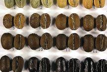 Coffee / by Liz McCoy