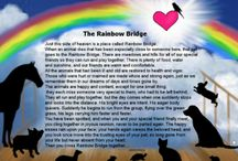 """Crossed Over Pets / Losing a pet is never easy........ it""""s like losing your best friend and a member of your family. Many BELIEVE when their beloved pets die they cross over the Rainbow Bridge.              All Images Copyright © 2016 Angelina LaFera"""