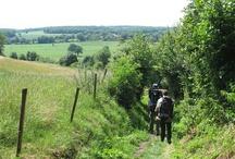 Wandelen heuvelland