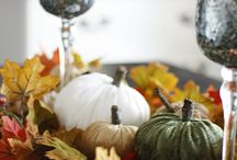 Fall Decorations / The best DIY decorations for the Fall season.