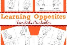 Preschool - Printables - Opposites