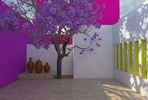 Architecture Luis Baragan / Medical architecture