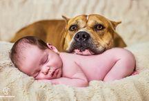 Newborn / Recém-nascido / Fotografia de recém-nascido