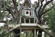 tree top hide away