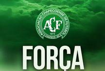 #FORCACHAPE