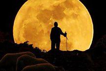 Moonstruck / La Luna