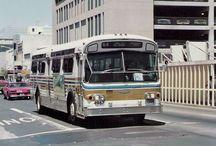 Flexible Transit Busses