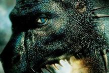 Eragon / by Nathan Arthurhultz