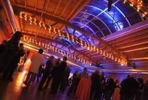 Amazing Event Decor / We host some spectacular events - here is just a sample of the amazing light and decor we've seen.