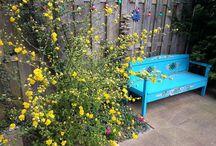 Leen Bakker Le Sud Winactie / Mijn tuin is één grote kleurenexplosie vol bloemen en leuke accessoires in lekkere felle kleuren. Een blauwe houten bank, limekleurige zitjes in de stoelen, veel vogelhuisjes, gebloemd tafelkleed, een flamingo en potten in alle kleuren van de regenboom. I love it!!