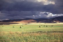 Montana Landscapes / Landscapes that have inspired us to explore. / by Trask