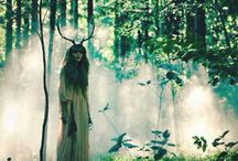 Dryad - photography