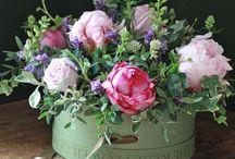 Aranžované kvety
