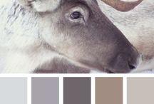 deers&reindeers/jeleni&sobi