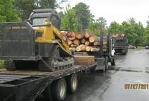 Tree Removal Equipment / Different tree equipment used for tree services