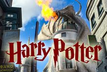Harry Potter Orlando Trip
