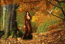 őszi nap