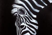 black paper and scratchboard art