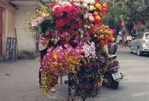 Bana bunlarla gel / by Baretta İhtimali