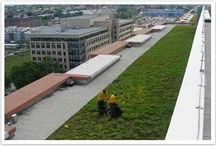Green Roofs / With the new demand for LEED (Leadership in Energy and Environmental Design), the need for qualified landscape contractors to provide installation and maintenance of green roofs is becoming ever more demanding.