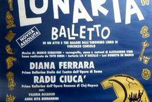 Astra Roma Ballet / Astra Roma Ballet e' una Compagnia di Danza fondata nel 1985...da Diana Ferrara /Etoile del Teatro Dell'Opera di Roma/ In questa bacheca Foto e Bozzetti di vari Spettacoli.