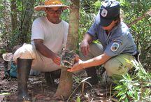 Monitoreo ungulados / Capacitación a funcionarios del parque sobre monitoreo de ungulados