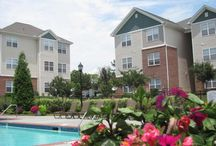 North Carolina - Rentals / 1-4 BR rental apt/homes
