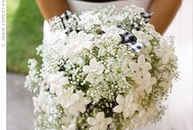 Bridesmaids bouquets / by Amanda Gregorich