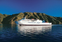 Interislander / Connecting the North and South