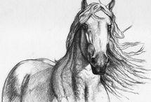 Drawing - Painting...Kresby - malby / Animals,horses,cats,dogs,wild animals,wildlife...Zvířata,koně,kočky, psi,kočkovité a psovité šelmy,divočina
