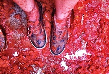 La Tomatina Spain  / by Lilies Diary