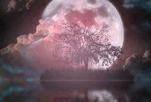 Měsíc - Moon / Měsíc - Moon