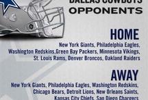 NFL - 2013 / by Cygnus Jim