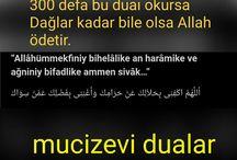 dualarr