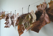 Autumn decorating / by Pamela Clocherty