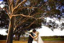 Wedding Photography / Browse through potential wedding photographers photos to see if they have the style you are looking for.